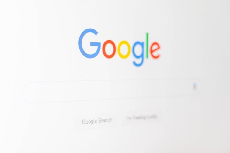 Google Screenshot SERPS